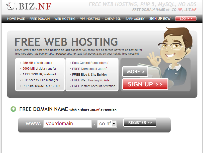 biz.nf hosting reviews